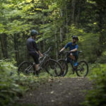 giant-talon-4-29er-mountain-bike-2021-16052347371622_650x